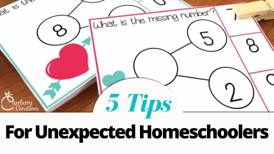 Unexpected Homeschoolers Here is Your PD